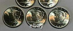 Lot of 5 BU $1 Silver Peace Dollars, Common Dates and Mint Marks